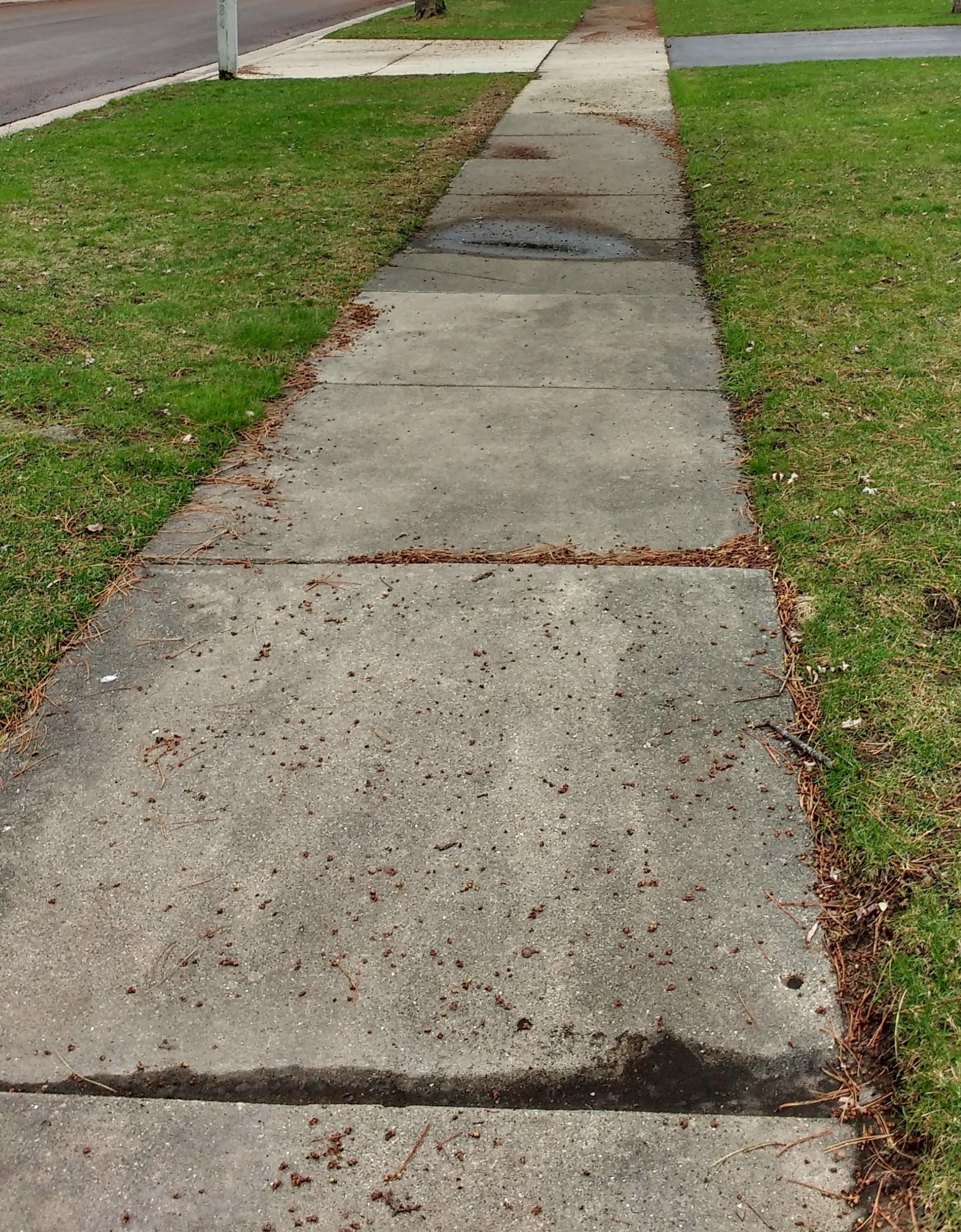 SidewalkResidential